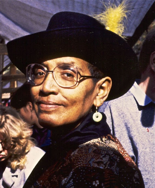Black Women Activists, Audre Lorde (Dagmar Schultz)